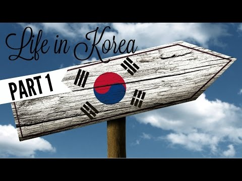Life In Korea (한국 에서 생활) - PART 1 | South African Couple (남아프리카 커플) | TaLK / EPIK