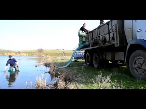 рыбалка в николаевской области в марте