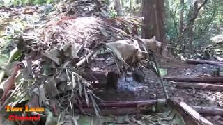 Yos hav zoov Nyob Los tsuas/ Hunting @ Laos 2018 Daim 6 Episode 6