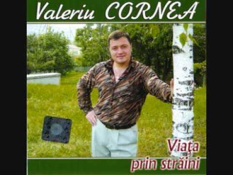 Valeriu Cornea - fratii mei