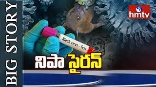 What Is Nipah Virus? Where Did The Deadly Nipah Virus Come From? | Big Story  | hmtv