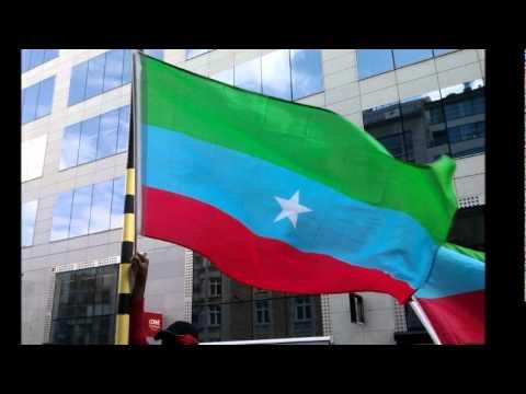 Ogaden   Wadani Song 2011- Melesow Garaad Xume - Rooble Mohamed