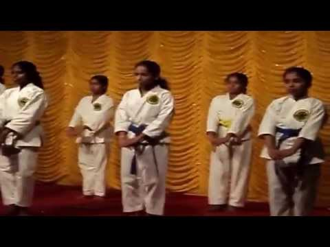 SHORIN RYU SEIBUKAN KARATE-DO  DEMO Image 1