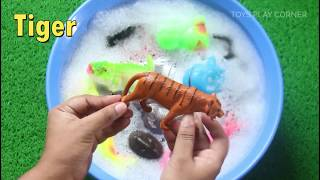 Learn Sea Animals Zoo Animals Farm Animals Names Insects Names Giraffe Video Toys For Kids Education