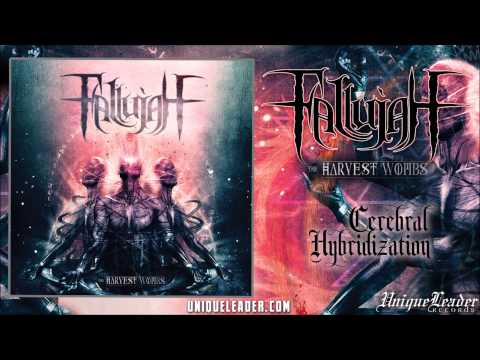 Fallujah - Cerebral Hybridization