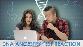 Foreigners React to Shocking DNA Results I MyHeritageDNA