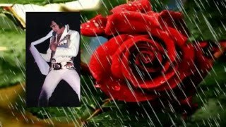 Watch Elvis Presley The Twelfth Of Never video