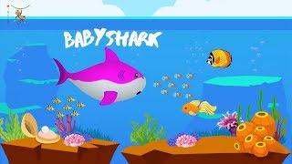 Baby Shark Dance Extended | Sing and Dance! | Animal song for Children | Doo Doo