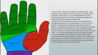 LIFE LINE | PALMISTRY & PALM READING |