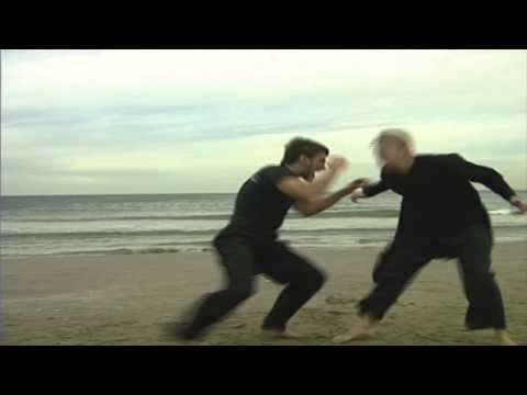 XMA Artes marciales extremas