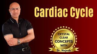 Cardiac Cycle - Systole & Diastole - Cardiology