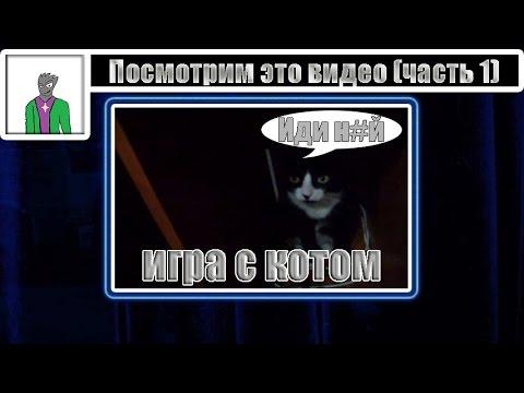 Посмотрим это видео (часть 1) [игра с котом]