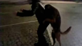 Sesso con cane per strada (XXX)