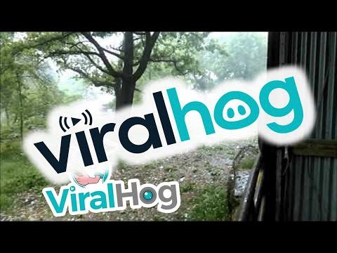 野球ボールサイズの特大の雹(ヒョウ)が大量に・・・。