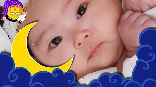 Soothing Baby Songs for Newborns | Baby Sleep Music for Brain Development | Baby Relax Lullaby Song