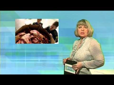 Десна-ТВ: День за днем от 2.03.2016 г.