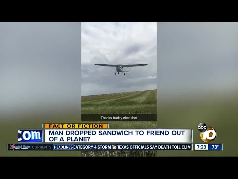 Sandwich delivery via plane?