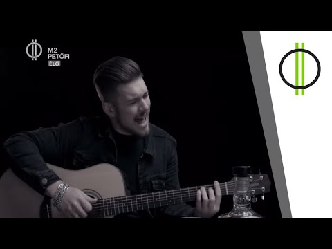 Ifjú titán A DAL 2020 színpadán – Molnár Dániel