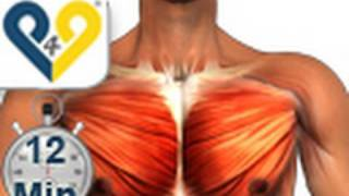 Chest Workout Home Version