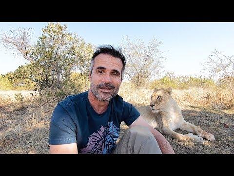 Thank You For 1 Million!   The Lion Whisperer