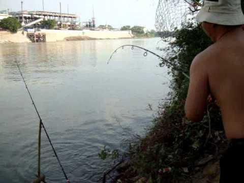 ตกปลากับ โจ้ เจ้าพระยา ตอน ตกปลาตะโกกหน้าโรงงาน