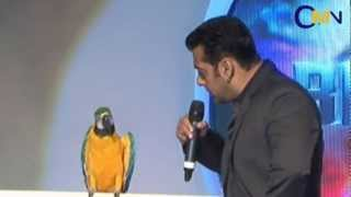 Salman Khan With Radhey The Talking Parrot
