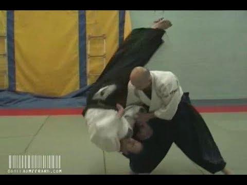 Aikido - Cyril Lagrasta 5th Dan Aikikai, Dublin, June 2008
