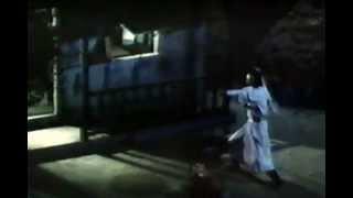 Classic Martial Arts Movie : Challenge The Invincible