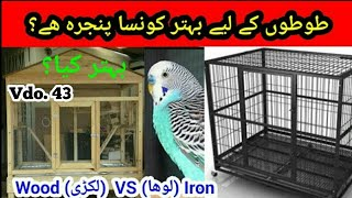 Australian Parrots: Wood (Lakri) Cage VS Iron (Lohy) Cage in Urdu / Hindi by |Arham|., Video. 43