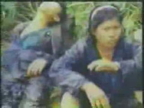 Ang Tunay na Kulay ng CPP/NPA 3