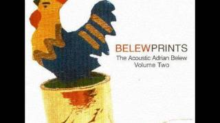 Watch Adrian Belew Cage video