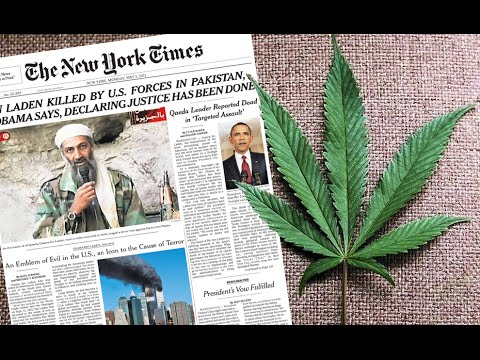 Hypocrites? New York Times Support Marijuana But Drug Tests