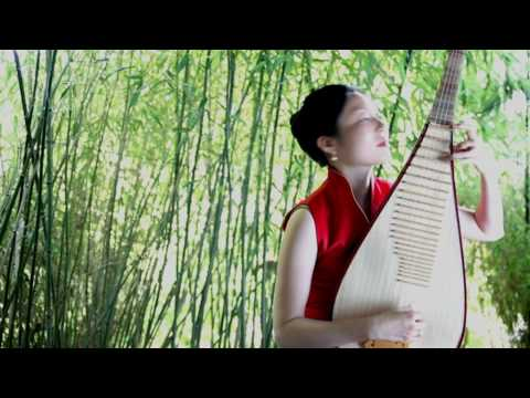 Traditional Chinese Music (Pipa):   - White Snow in the Spring Sunlight