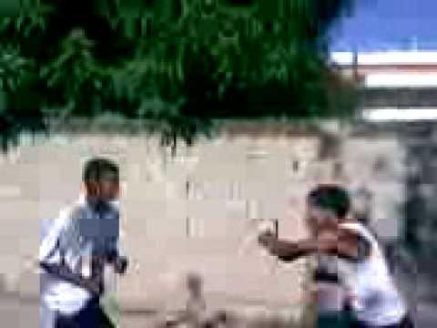 Pelea De Alex Y Lengi video