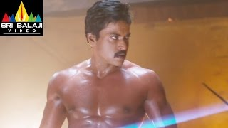 Mr.Pellikoduku Movie Sunil Powerful Fight Scene   Sri Balaji Video