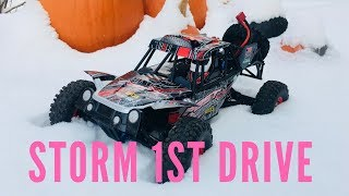 Wltoys Storm RC 4WD Buggy - First Drive