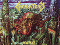 Crematory de Mirror (Awake)