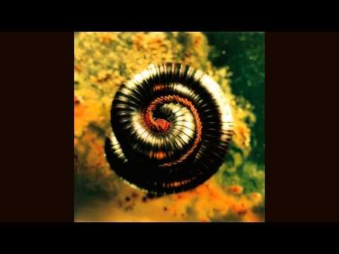 Nine Inch Nails - Memorabilia