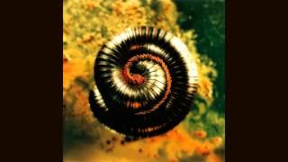 Watch Nine Inch Nails Memorabilia video