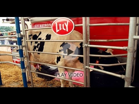Lely's Automated Milking Machine - The Astonaut A4