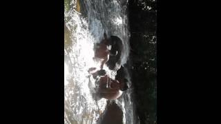 Download Hidden cam - hot sun river bath - jelari 3Gp Mp4