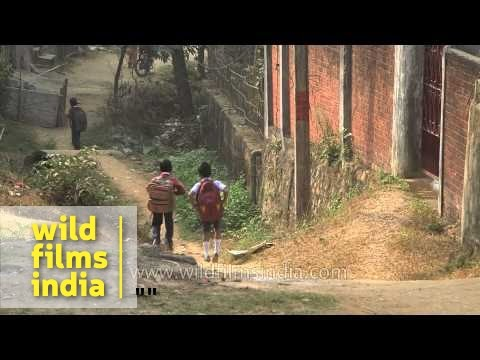 Assamese boy walks to school : morning routine in India