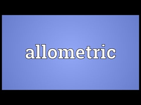 Header of Allometric