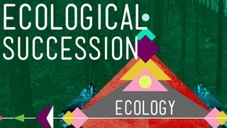 Ecological Succession_ Change is Good - Crash Course Ecology #6