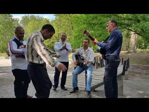 ANIROSZ 2015 - EGY KIS ÖRÖMZENE - LIVE