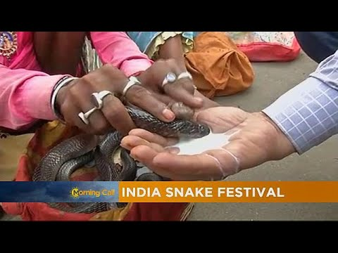 India Snake Festival  seek blessings of the snake God!!!