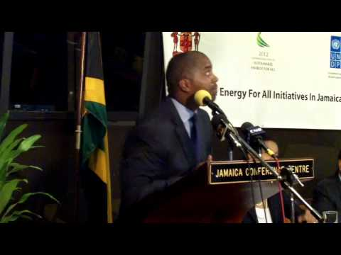 SE4All Launch in Jamaica: Hon. Julian-Robinson keynote address