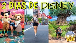 VLOGÃO NA DISNEY (ANIMAL KINGDOM E HOLLYWOOD STUDIOS) ♥ - Bruna Paula