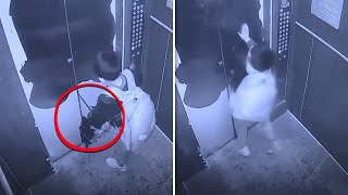 CCTV Camera Captured Moments That No One Was Supposed to See