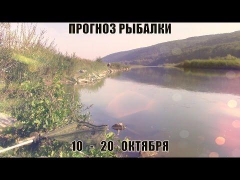рыболовные секреты видео русаков владимир